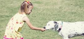 dalmatian-and-girl