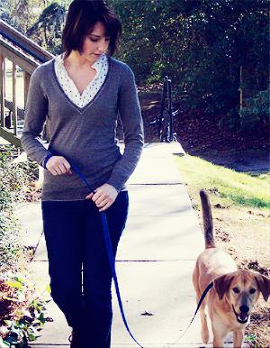 Client enjoys a loose leash walk.